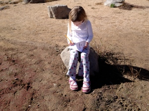 My daughter working on her Explorer guide at Watson Lake. I {heart} homeschooling!